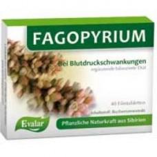 FAGOPYRIUM