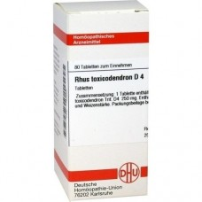 RHUS TOXICODENDRON D 4 Tabletten 80 St