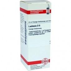 LACHESIS D 6 Dilution 20 ml