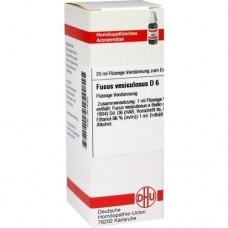 FUCUS VESICULOSUS D 6 Dilution 20 ml