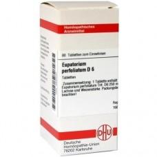 EUPATORIUM PERFOLIATUM D 6 Tabletten 80 St