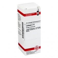 LACHESIS C 12 Dilution 20 ml