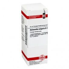 ALCHEMILLA VULGARIS D 2 Dilution 20 ml