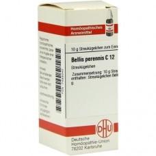 BELLIS PERENNIS C 12 Globuli 10 g