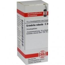 GRINDELIA ROBUSTA C 30 Globuli 10 g