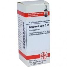 KALIUM NITRICUM D 12 Globuli 10 g