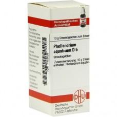 PHELLANDRIUM AQUATICUM D 6 Globuli 10 g