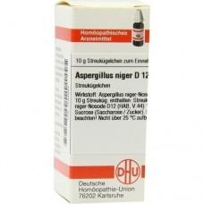 ASPERGILLUS NIGER D 12 Globuli 10 g