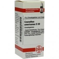 CEANOTHUS AMERICANUS D 30 Globuli 10 g