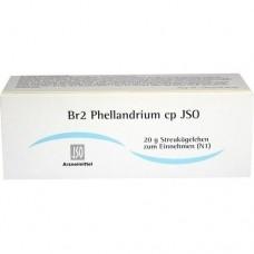 JSO JKH BRUSTMITTEL Br 2 Phellandrium cp Globuli 20 g