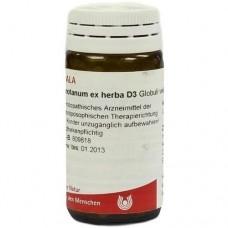 ABROTANUM EX Herba D 3 Globuli 20 g