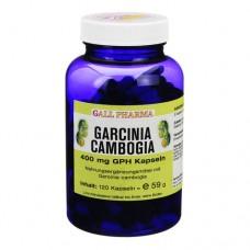 GARCINIA Cambogia 400 mg GPH Kapseln 120 St