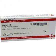 LACHESIS D 6 10x1 ML